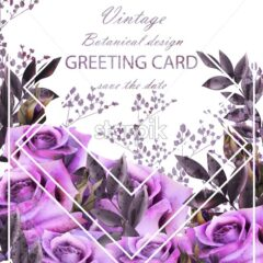 Vintage card with roses Vector. Realistic stylish purple roses. Greeting card or invitation botanical decor