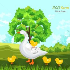 Duck and buds Vector. Eco farm concept. green summer background