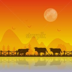 Cows silhouette at sunset Vector background illustration