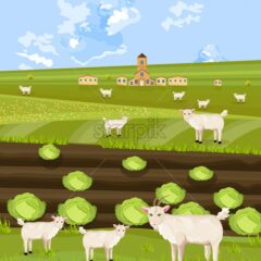 Goats at the farm Vector. green summer background