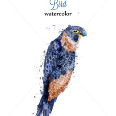 Parrot watercolor Vector tropic bird. Colorful painted style illustration
