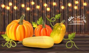 Autumn colorful pumpkins card Vector. Fall season harvest detailed illustration - starpik