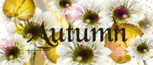 Autumn flowers Vector watercolor. Floral banner style decor poster card illustration - starpik