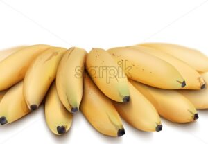 Bananas Vector isolated watercolor style. Exotic fruits detailed illustration - starpik