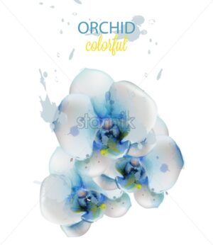 Blue orchid flowers watercolor isolated Vector. Delicate floral decoration - starpik