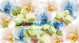 Orchid flowers watercolor background Vector. Delicate floral decoration - starpik