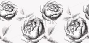 Roses flowers line art splash stains effect Vector. Vintage ink style - starpik