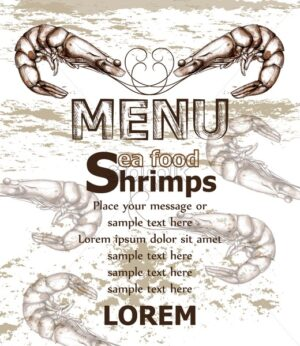 Shrimps sea food menu template Vector line art style. Design label illustration - starpik
