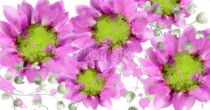 Spring daisy flowers background watercolor Vector. Beautiful vintage pastel colors floral decor banner - starpik