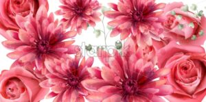Spring roses and daisy flowers banner watercolor Vector. Beautiful vintage pastel colors floral decor - starpik
