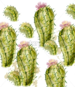 Cactus pattern Vector watercolor. Summer exotic texture. Tropic collection painted style - starpik