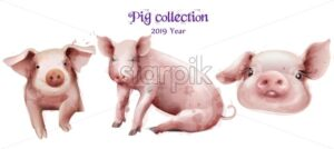 Cute pigs icon set in watercolor Vector. Pig New Year symbols isolated template - starpik