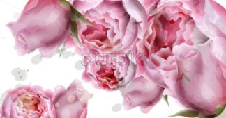 Peony flowers watercolor background Vector. delicate postcard, Women day greeting card. Beautiful pastel color - starpik
