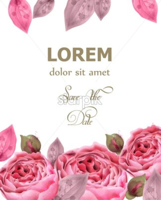 Pink roses watercolor background Vector. Invitation card, wedding ceremony, delicate postcard, Women day greeting card. Beautiful color - starpik