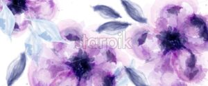 Purple flowers watercolor background Vector. Delicate blooming floral banner decor. Invitation card, wedding ceremony, postcard, Women day greeting. colorful drops flow. Beautiful pastel color - starpik