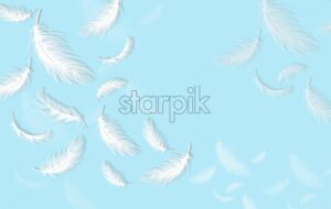 Feathers background Vector realistic. White feathers on blue card template - starpik