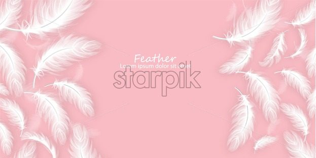 Feathers background Vector realistic. White feathers on pink card template - starpik