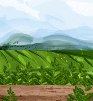 Green fields watercolor background Vector. Nature views. Organic eco fields design - starpik