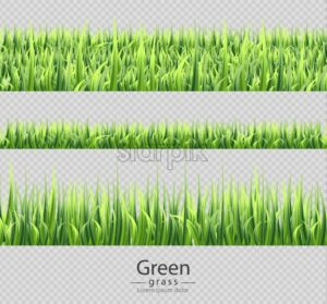 Green grass set collection isolated Vector realistic. Transparent background - starpik