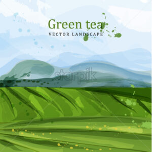 Green tea fields watercolor background Vector. Nature mountains views. Organic eco plantation - starpik