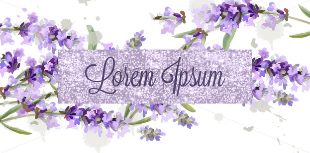 Lavender Card Watercolor Vector Flowers Bouquet Background Spring Delicate Banner Wedding Invitation Women Day Birthday Template