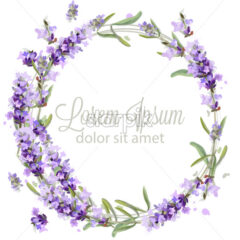 Lavender wreath card watercolor Vector. Flowers bouquet background. Spring delicate banner. Wedding invitation, Women day, birthday template - starpik