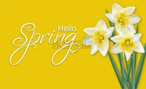 Spring card narcissus flowers bouquet on yellow background Vector realistic - starpik