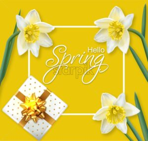 Spring narcissus flowers frame Vector realistic. Delicate card bouquet. Golden Gift box. Spring message text - starpik