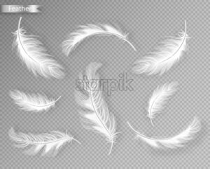 White feathers set collection Vector realistic. Different falling twirled feathers isolated on transparent background. Realistic style. 3d illustration - starpik
