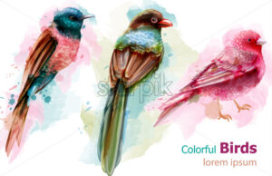 Colorful tropic birds watercolor Vector. Beautiful exotic set collection - starpik