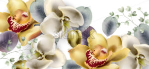 Orchid flowers vintage banner Vector watercolor. Delicate seasonal background. Beautiful spring floral design - starpik
