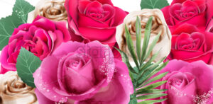 Pink roses and glitter watercolor Vector. Beautiful floral background - starpik