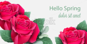 Red roses card Vector realistic. Beautiful floral decor with palm leaves. Exotic tropic postcard background - starpik