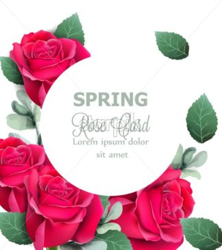 Red roses round card Vector realistic. Beautiful floral decor with palm leaves. Exotic tropic postcard - starpik