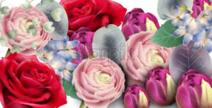 Roses bouquet Vector watercolor. Delicate seasonal background. Beautiful spring floral design - starpik
