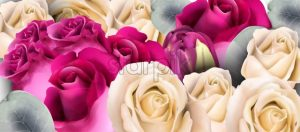 Roses bouquet Vector watercolor. Mother day background. Beautiful spring floral design - starpik