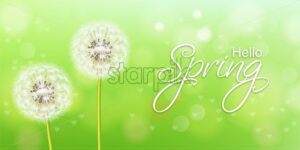 Spring dandelion flower Vector realistic. Green background soft bokeh - starpik