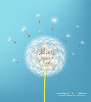 Spring dandelion flower Vector realistic. Sky background soft bokeh illustration - starpik