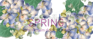 Spring hydrangea banner Vector watercolor. Romantic floral invitation or greeting card decoration. Women day, Valentines Day, sales and other events with little white flower - starpik