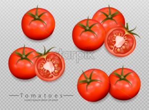 Tomatoes isolated Vector realistic. Detailed 3d illustration template for label, icon, product placement - starpik