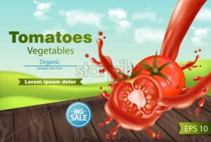 Tomatoes splash Vector realistic. Green eco background. Detailed 3d banner template for label, icon, product placement - starpik