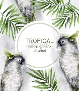 Tropic card watercolor Vector with colorful parrot birds and palm leaves decor - starpik