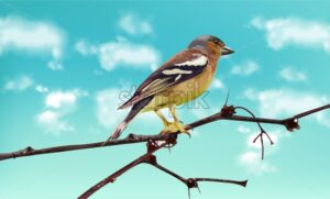 Beautiful sparrow on a branch Vector. Spring card. Blue sky background - starpik