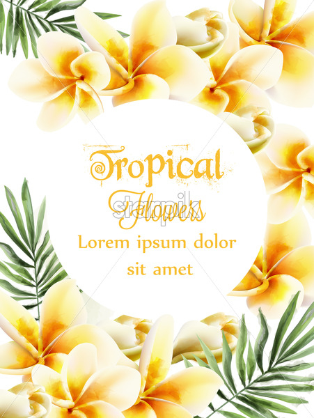Plumeria Yellow Flowers Vector Watercolor Summer Time Paradise Card Wedding Ceremony Invitation Exotic Festival Background