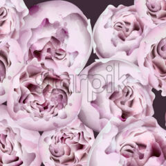 Spring peony flowers bouquet Vector watercolor. Beautiful floral wedding or party background - starpik