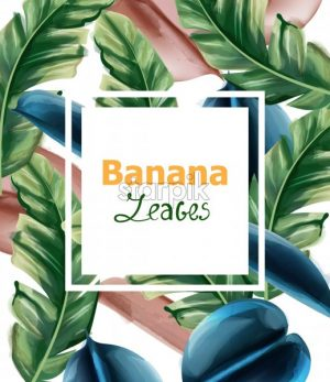 Banana leaves Vector watercolor background. Tropic exotic card. Summer season template - starpik