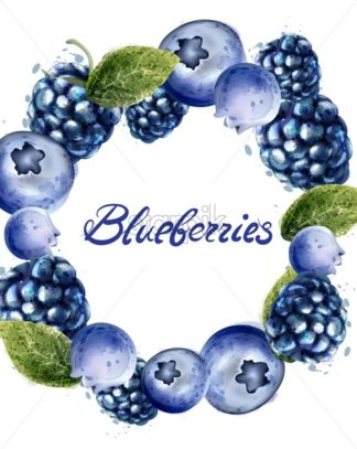 Blueberries frame Vector watercolor. Summer delicious fruits card - starpik