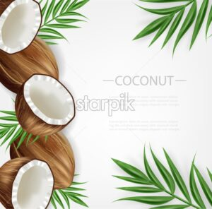 Coconut background Vector realistic. Layout template tropic exotic card - starpik