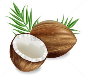 Coconuts Vector realistic. template tropic exotic background. detailed 3d illustration - starpik