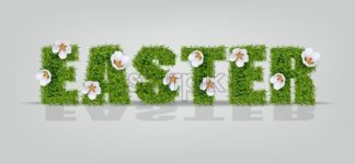 Easter green grass sign Vector realistic. Chamomile flowers details. Holiday symbol. Banner or label template - starpik